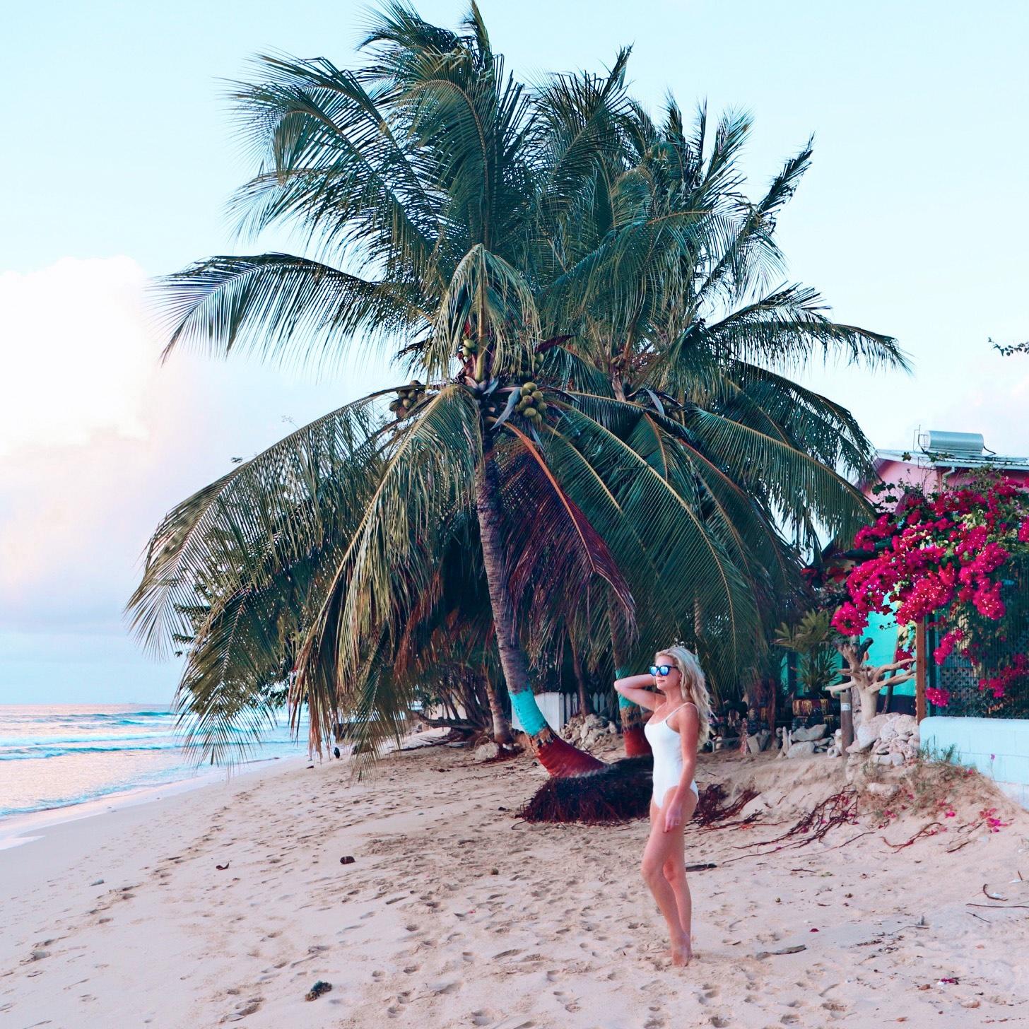 Barbados Travelguide Rese guide Corona Drömresan